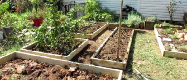 Чем удобрить истощенную почву